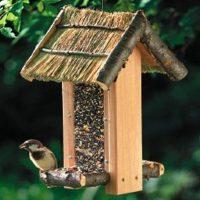 hrana_za_ptice
